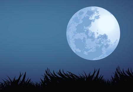 noche y luna: ilustraci�n de la noche de luna llena.