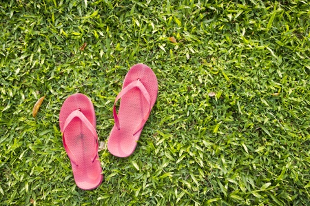 flip flops: A pair of slippers are left on field of a relaxed day.