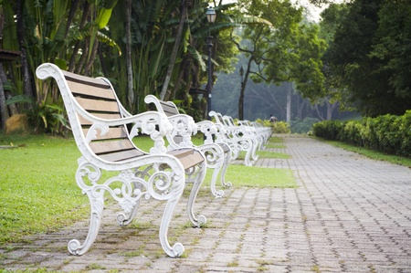 Empty bench in a park, nobody is around as time passing. Stock Photo - 11753266