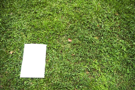 a white board is on a grass field, for message display. clipping path of the white board is in jpg. photo