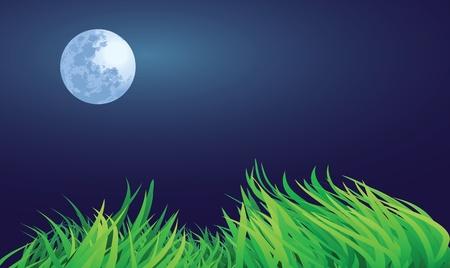full moon night illustrations, countryside setting. Stock Vector - 11821106