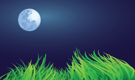 full moon night illustrations, countryside setting. Stock Vector - 11821106