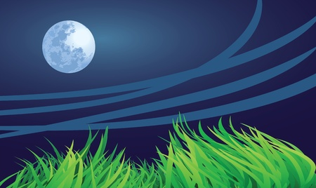 full moon night illustrations, countryside setting. Stock Vector - 11821107