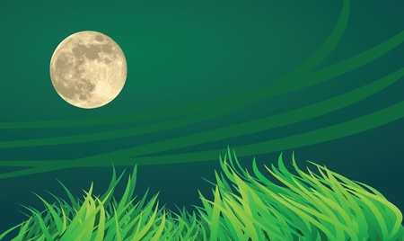 full moon night illustrations, windy and countryside setting Stock Vector - 11821169