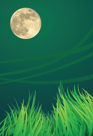 full moon night illustrations, windy and countryside setting Stock Vector - 11821659