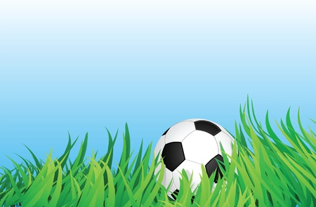 grassfield: soccer ball or football on grassfield, vector format. Illustration