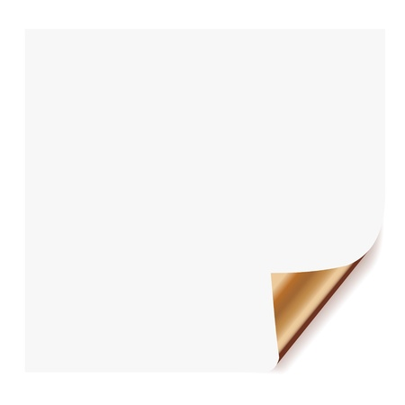 note pad: realistic paper page with corner curl effects.