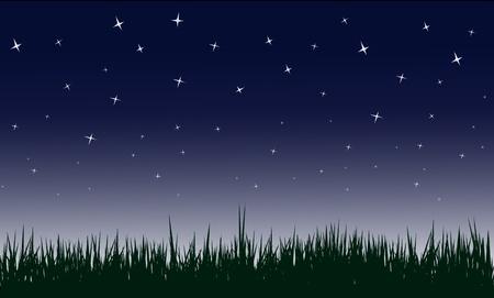 blinking: noche stary en campo, ilustraciones.