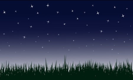 stary night in country side, illustrations. Vector