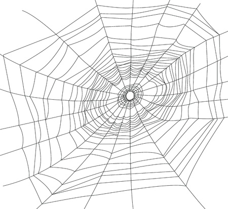 spider net: spider web or cobweb illustrations   Illustration