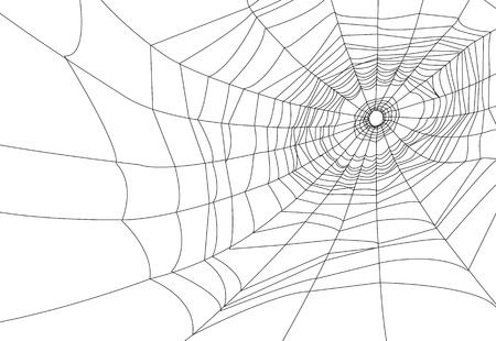 spider web or cobweb illustrations   Ilustração