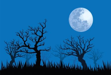 spooky: illustrations of spooky full moon night