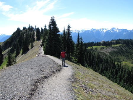 Olympic hiking trail