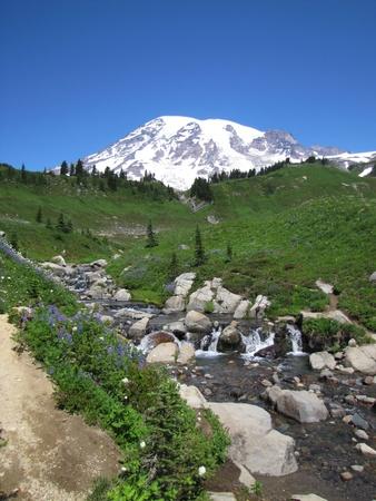 mt rainier: Mt  Rainier