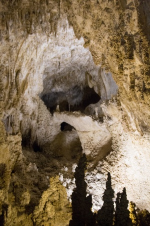 Formations in Carlsbad Caverns