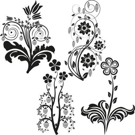 flowers silhouette Reklamní fotografie - 11877013