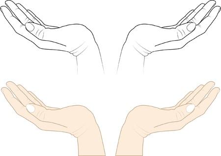 mains ouvertes: les mains ouvertes