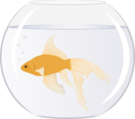 Goldfish in the bowl with bubbles Stock Vector - 12804779