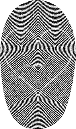 fingerprints in heart shape Vector