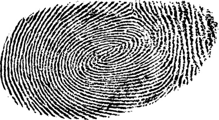 fingerprint Stock Vector - 13079464