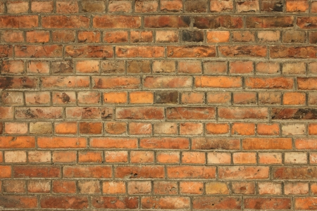partment: Old brick wall - full scale background