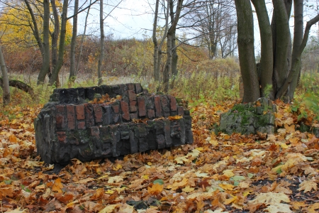 rubble in the autumn forest photo