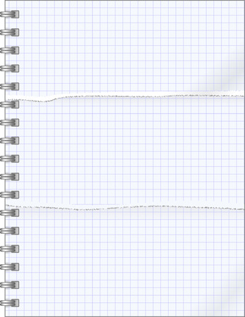 teared: teared pages  of notebook