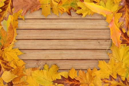 leaves frame: deja el marco en el fondo de madera Foto de archivo