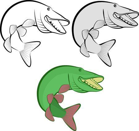 Pike fish art illustration. Illustration