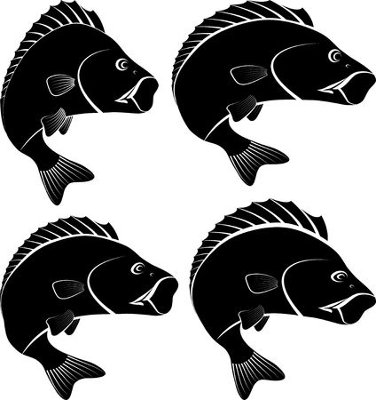Silhouette of perch fish flat icon design vector illustration