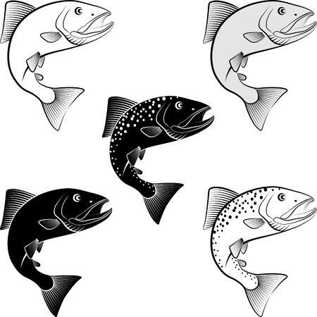 Set of salmon in clip art illustration. Illustration
