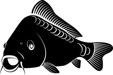 고립 된 잉어 물고기 - 클립 아트 그림
