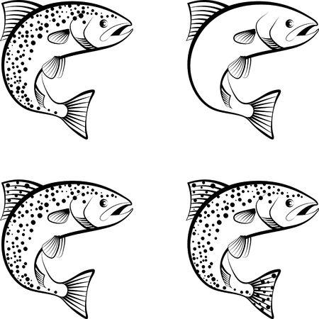 saumon et truite - illustration clipart Vecteurs