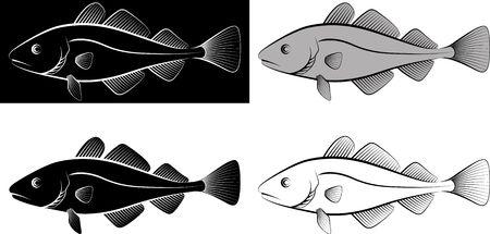 poisson morue isolé - illustration clipart et dessin au trait Vecteurs