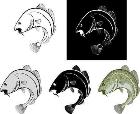 Isolated Cod Fish - Clip Art Illustration and Line Art