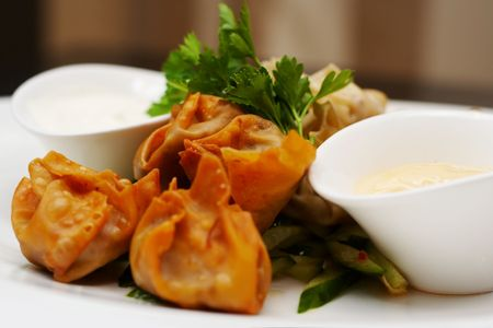 Steamed and deep fried duckleg wontons with soy-sesame mayo closeup photo