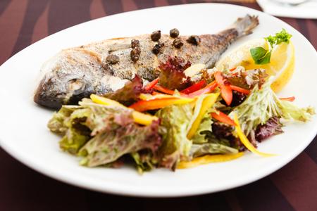 Grilled gilt-head bream fish