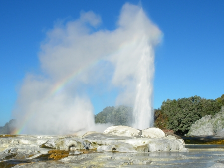 erupt: Pohutu Geyser eruption with a rainbow over, Te Puia, Rotorua, New Zealand