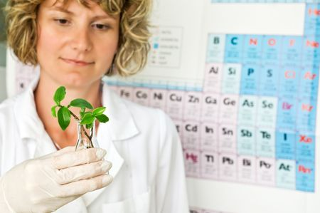 herbal knowledge: scientist with africulture sample on periodic system of elements