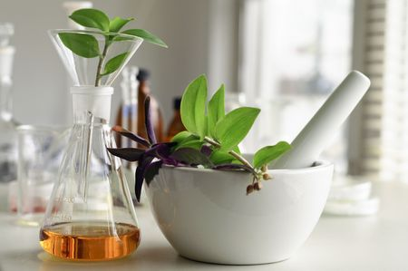 mortar and pestle with herbs in laboratory