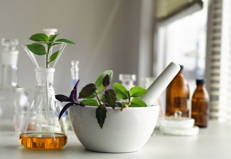 biodiesel plant: mortar and pestle with herbs in laboratory