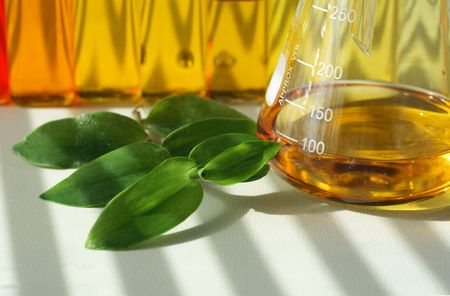 biodiesel plant: herb and laboratory glass with alternative fuel Stock Photo