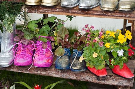 stand with flowers planted in shoes Stok Fotoğraf