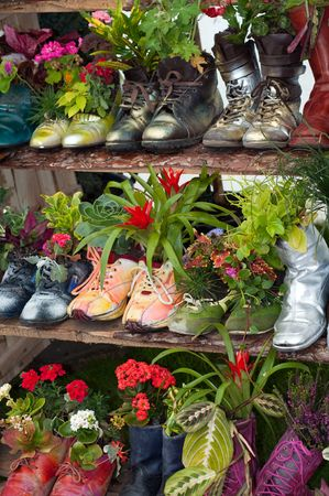 planted: stand with flowers planted in shoes Stock Photo