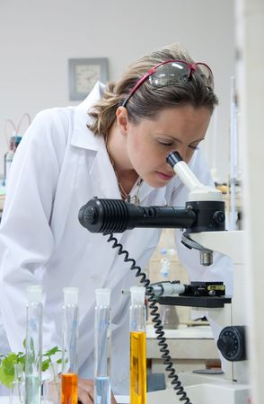 scientist looking into a microscope Stock Photo