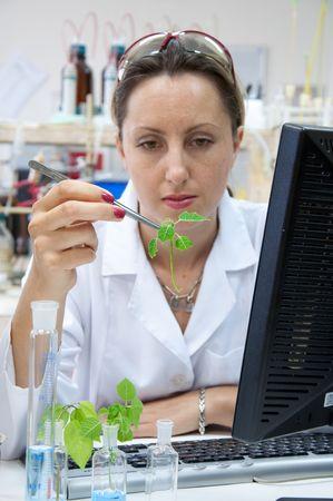 genetica: ricercatore con un impianto di verde