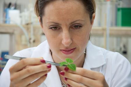 researcher with a green plant