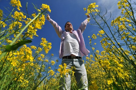 adult rape: young man in a yellow field of rape Stock Photo