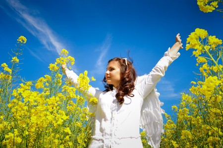 adult rape: girl with white wings in a yellow field
