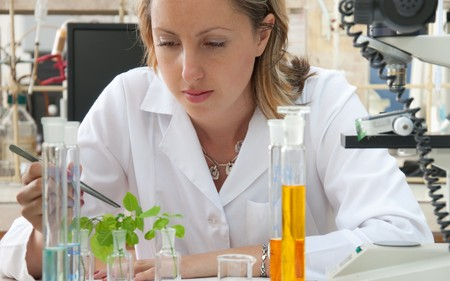Scientist researching a green plant Stock Photo